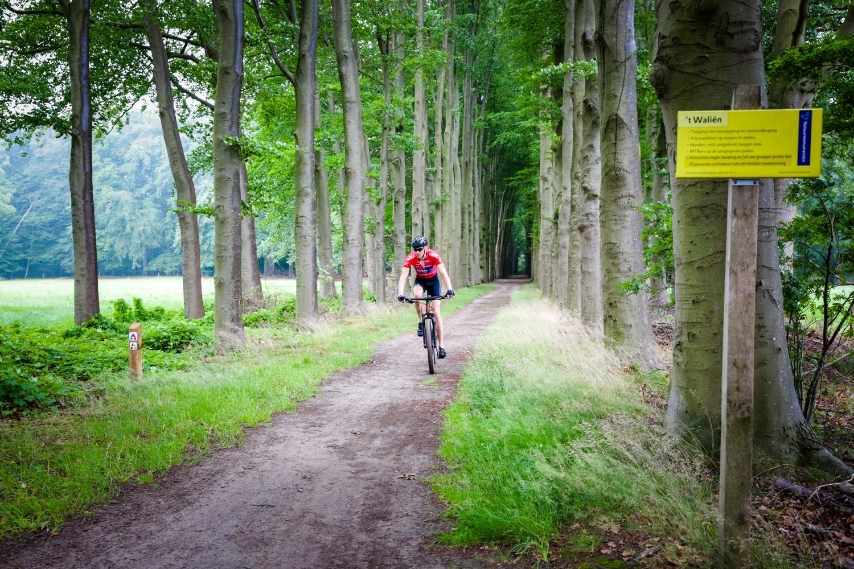 Triatlon Mountainbike