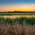 Ondergaande zon rivier de Berkel Almen natuur achterhoek weer geven